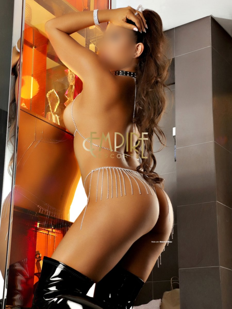 Sydney Latino Escort Agencies Latina